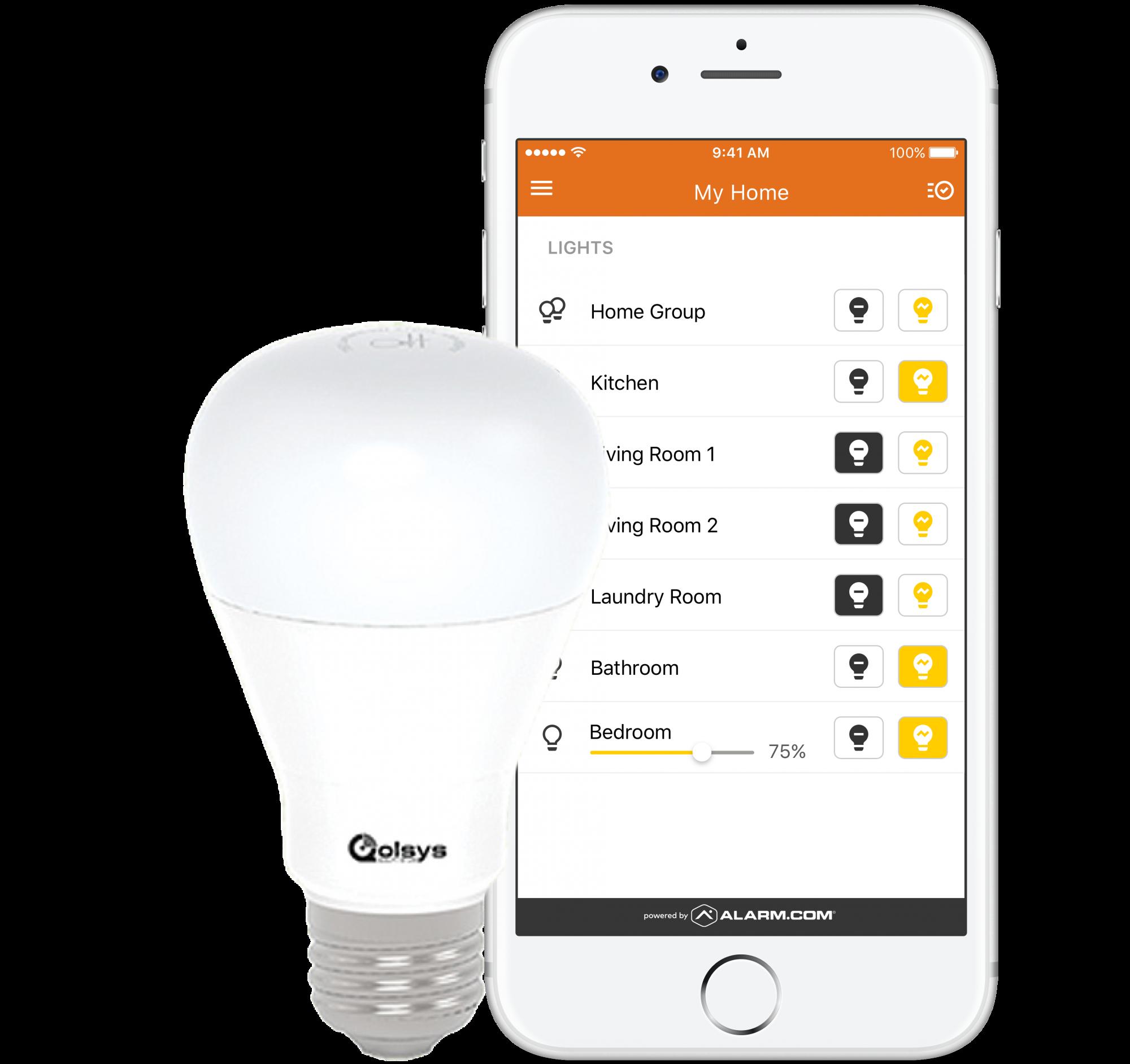 Home Security smart light bulb